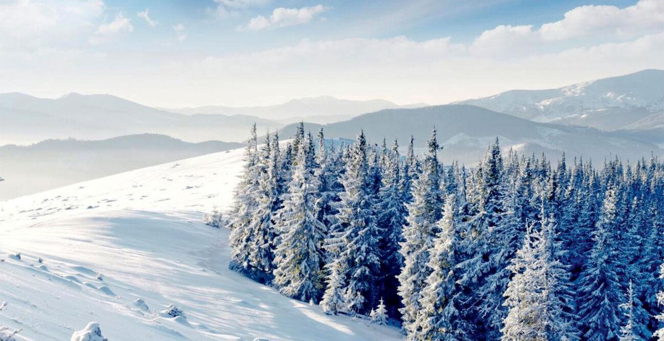 Зимние Карпаты. Славское. Отдых в коттеджах.