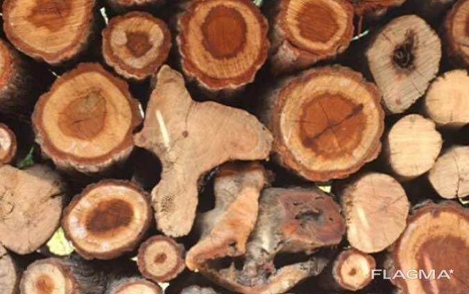 дрова не дорого   6 кубов = 3900 с доставкой по городу (кругляк 30-40)