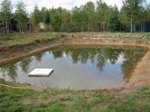 Строительство водоемов для рыбалки
