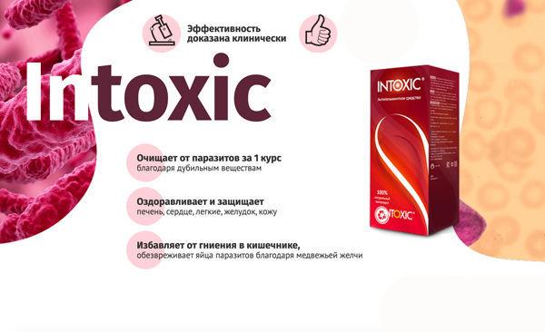 Фото 7 - Средство от паразитов Intoxic