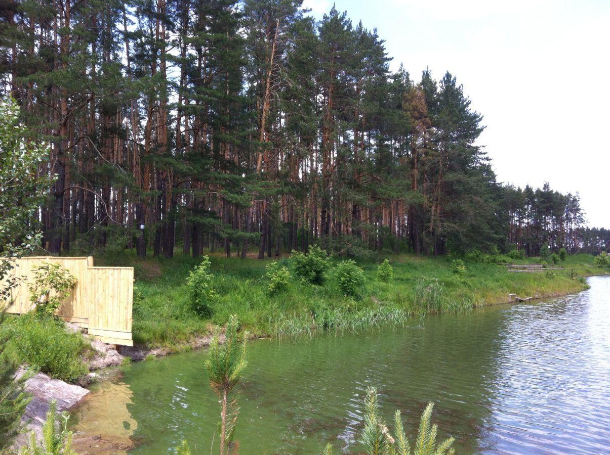 Продажа участка в лесу с озером с.Лишняя