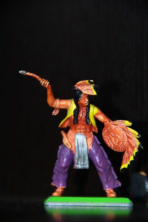 Фото 4 - индейцы