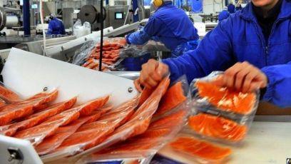 Упаковка копченой рыбы! срочно! Работа в Польше Легально
