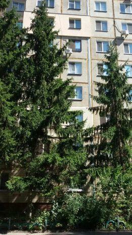 Продам 3к.кв Чешку Тополь-3 дом№3