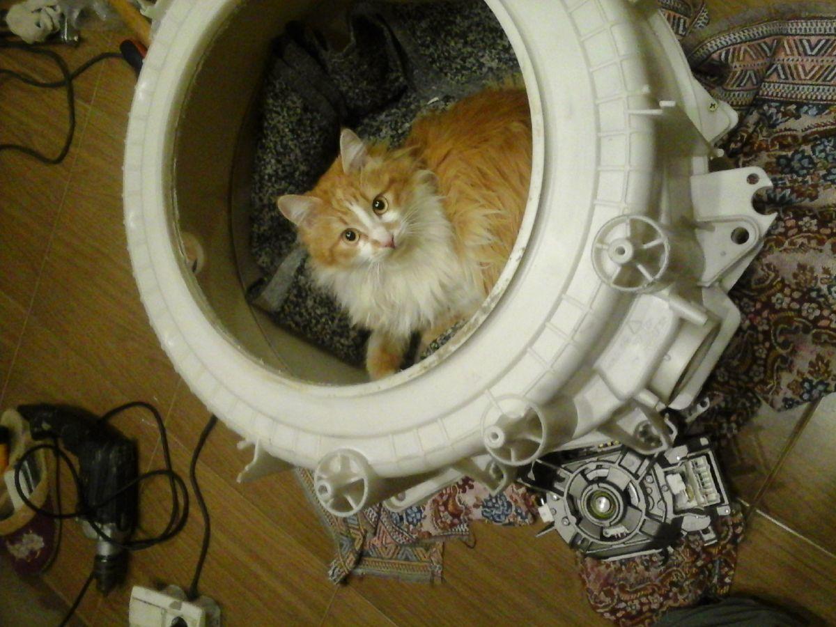Фото - Ремонт стиральных машин. Холодная Гора,Павлово Поле Скидка 30%