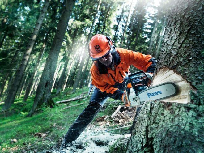 Фото 2 - Рабочие,вальщики леса в Литве
