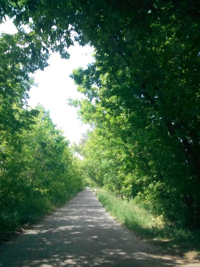 Фото - Продам земельный участок в Борисполе, ул Шевченко