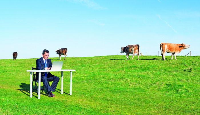 Фото - Разработка стратегии выхода на сельскохозяйственный рынок Украины