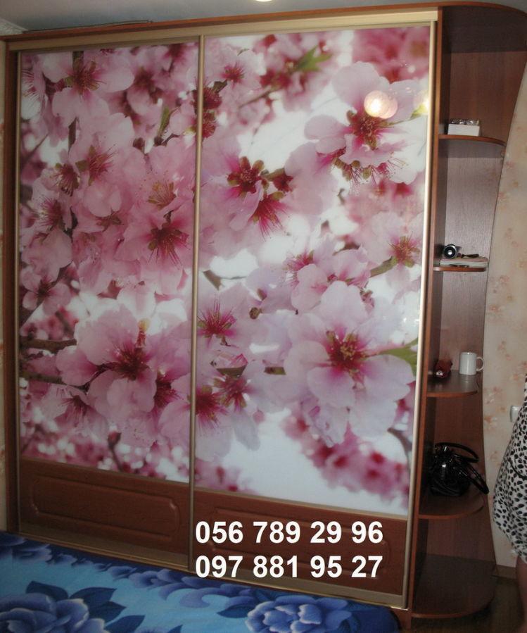 Фото - Шкаф-купе на 2 двери Сакура