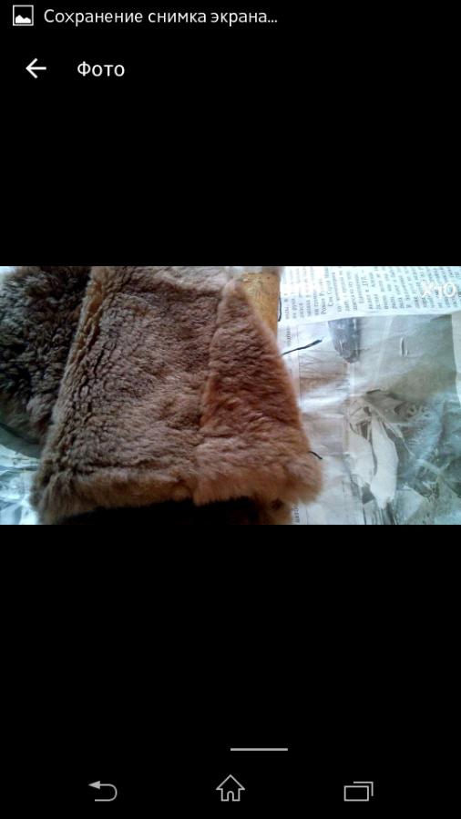 Фото 4 - Шкурки стриженного бобра, на воротник отделка